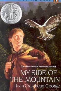 my side of the mountain book cover graphic